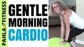Morning CARDIO with a Stability Ball | Gentle 15 Minute Beginner-Friendly LOW IMPACT Home Workout