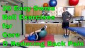 20 Easy Swiss Ball Exercises for Core \u0026 Reducing Back Pain. New Shoulder/Leg Exercises Included.