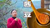 "Soy food | Guizhou specialty in China 貴州風味""水醬豆""和""麻辣醬豆""的製作全過程,配方和做法都在裡面,醬香十足,放1年不會壞 | 野小妹wild girl"